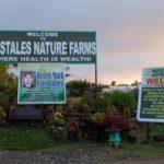 Farm fun at Costales Nature Farms