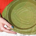 Leaf Republic turns leaves into paper plates