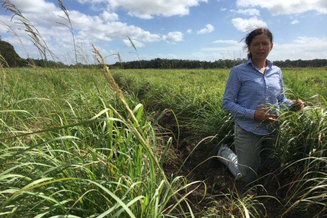 Farmer Meg McDougall