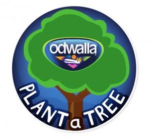 Odwalla Plant A Tree