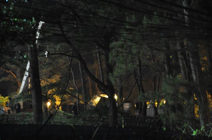 Trees being cut at night at SM Baguio